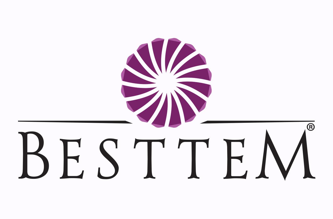 Bestem Logo Çalışması