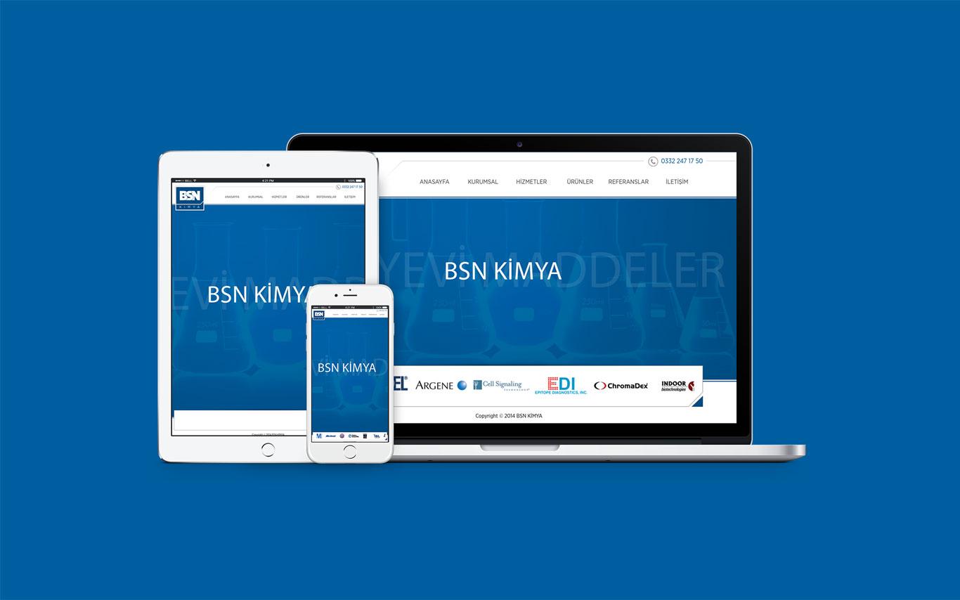BSN Kimya Web Tasarım Çalışması